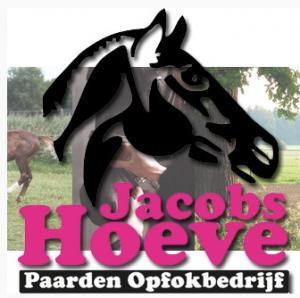 jacobshoeve